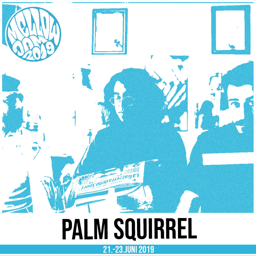Palm Squirrel